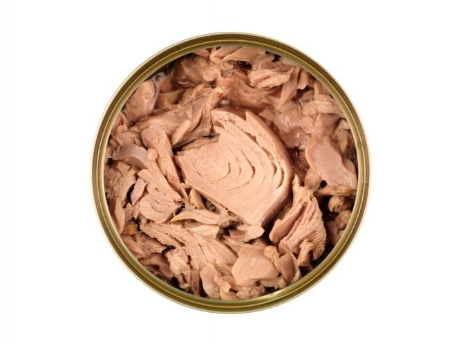 canned-tinned-tuna